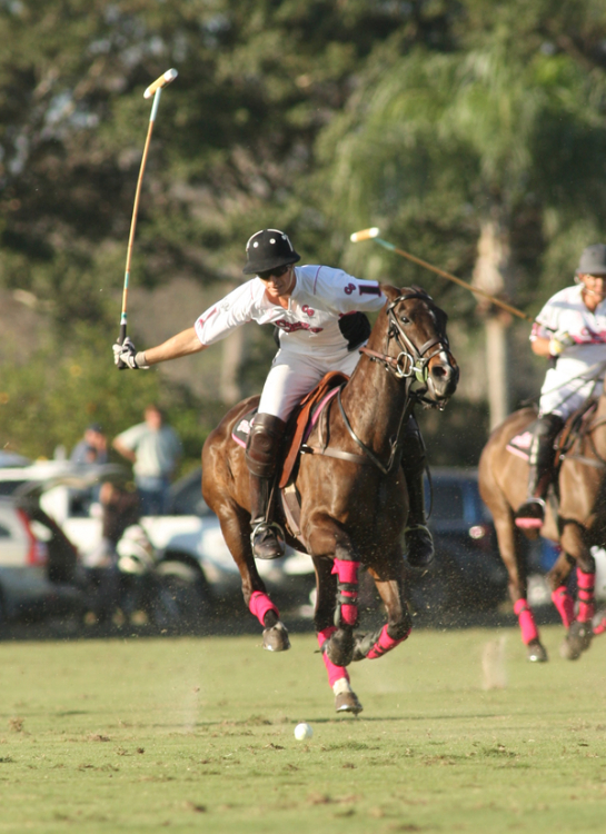 Crab Orchard vs. Zacara Polo Photos by Alex Pacheco