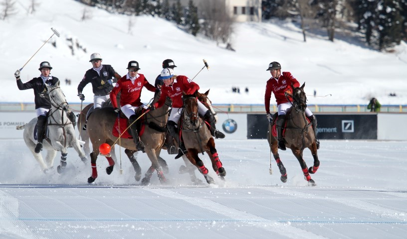 The Rules of Snow Polo