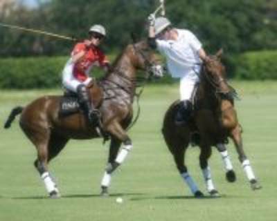 Fall Polo Season Opener at Palm City Polo Club